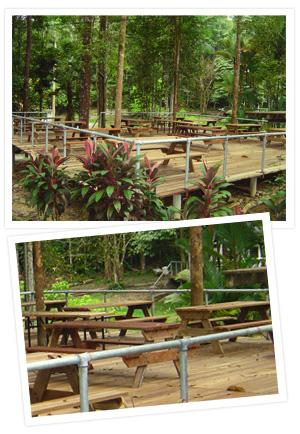 Skytrex Adventure Taman Botani Negara Shah Alam Whoa