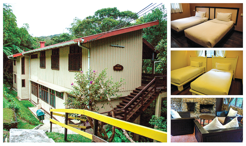 Example of basic twin share room in Kinabalu Park