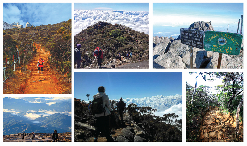 Mount Kinabalu trail to summit via Timpohon