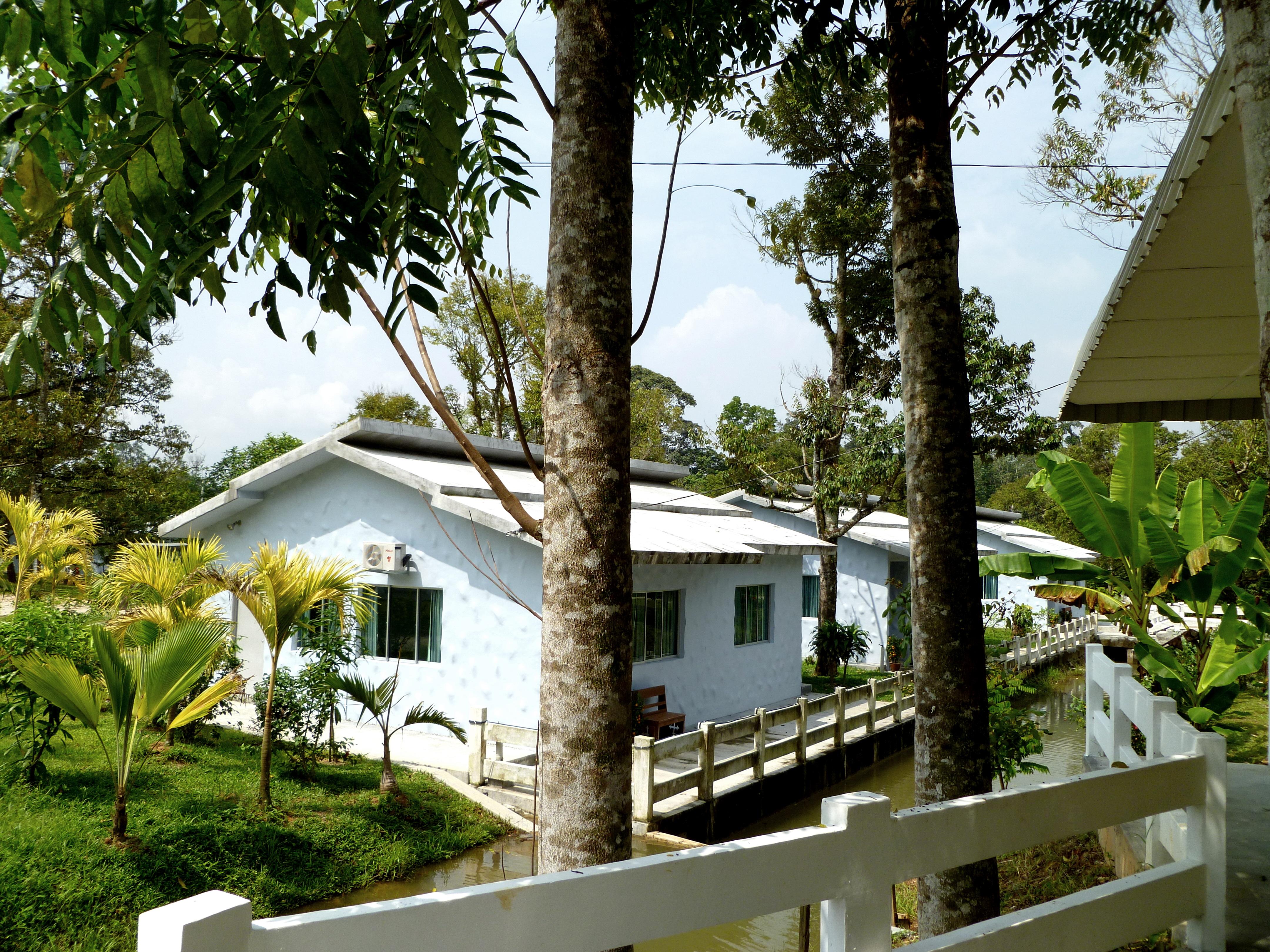 Tanjung Malim Malaysia  City new picture : jungles of Kalumpang, Tanjung Malim | WHOA! Adventures | Best Malaysia ...