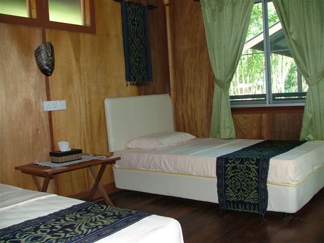 Agamid Room, Nature Lodge Kinabatangan