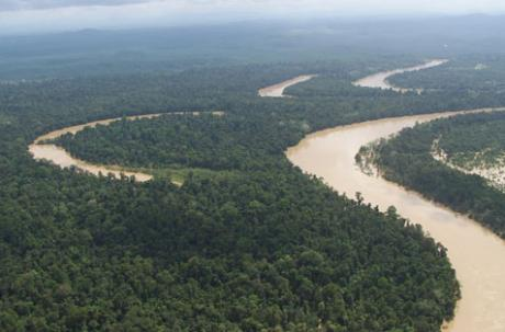 Kinabatangan Plain and an example of Oxbow